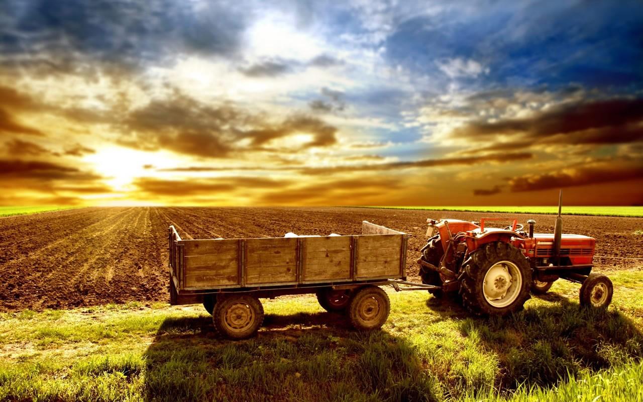 Διευκρινίσεις ΑΑΔΕ για την υποβολή δηλώσεων αγροτών ειδικού καθεστώτος ΦΠΑ