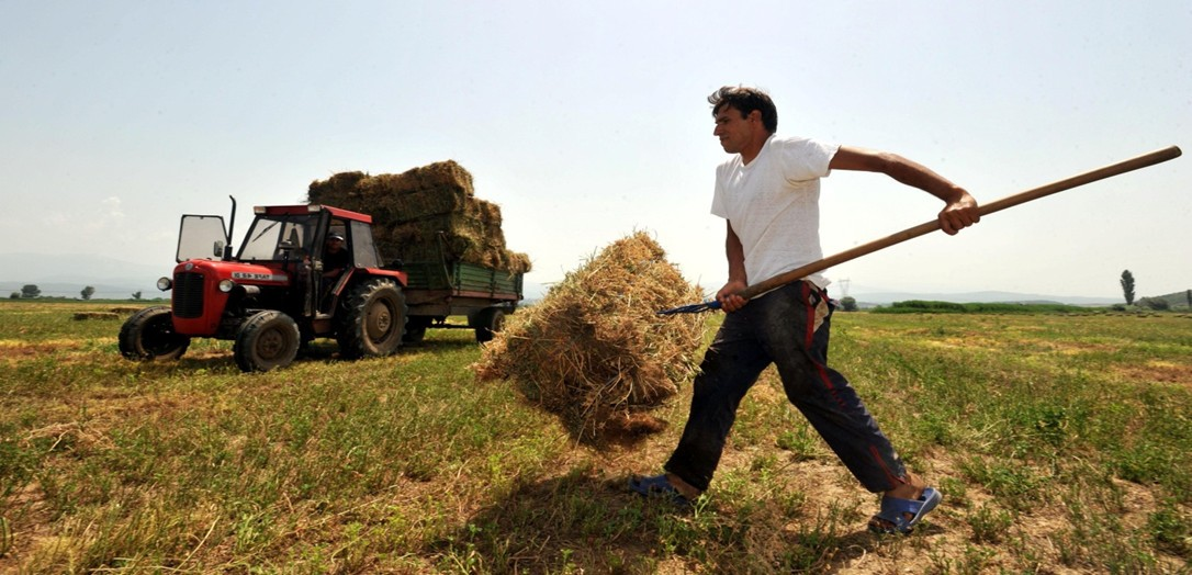 Αγρότες: Πως φορολογούνται τα εισοδηματά τους