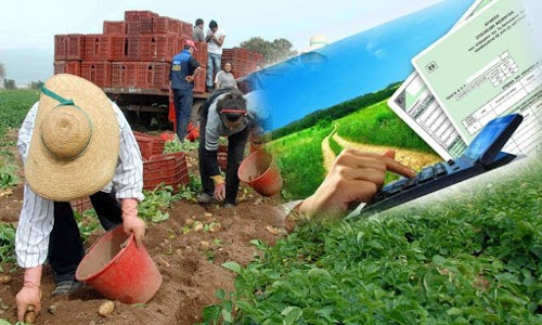Δήλωση Αγροτικών επιδοτήσεων (Ε3) για αφανείς αγρότες χωρίς ΚΑΔ
